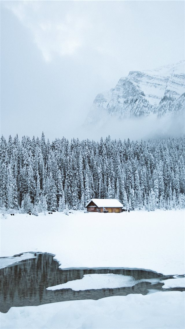 brown shack beside forest during snow iPhone 8 wallpaper