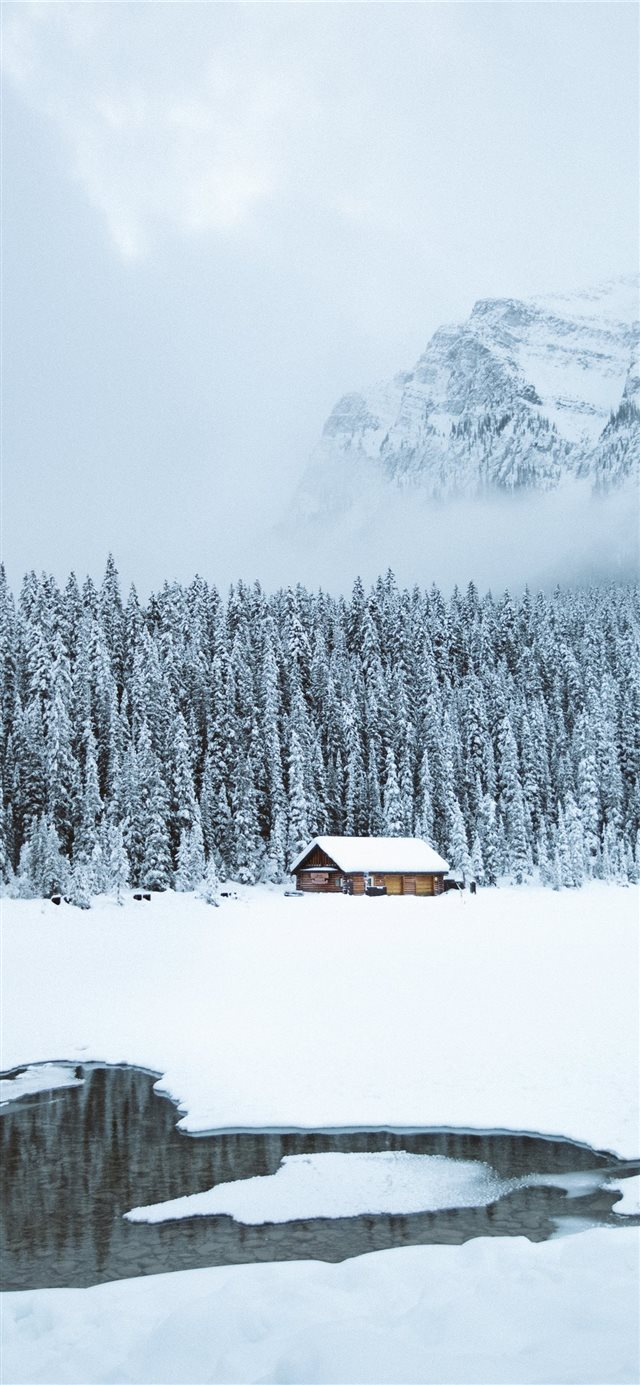 brown shack beside forest during snow iPhone X wallpaper