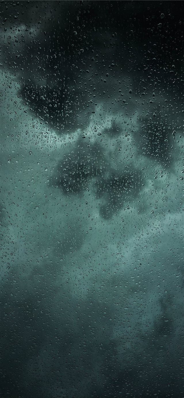 dew drops on glass panel iPhone 11 wallpaper