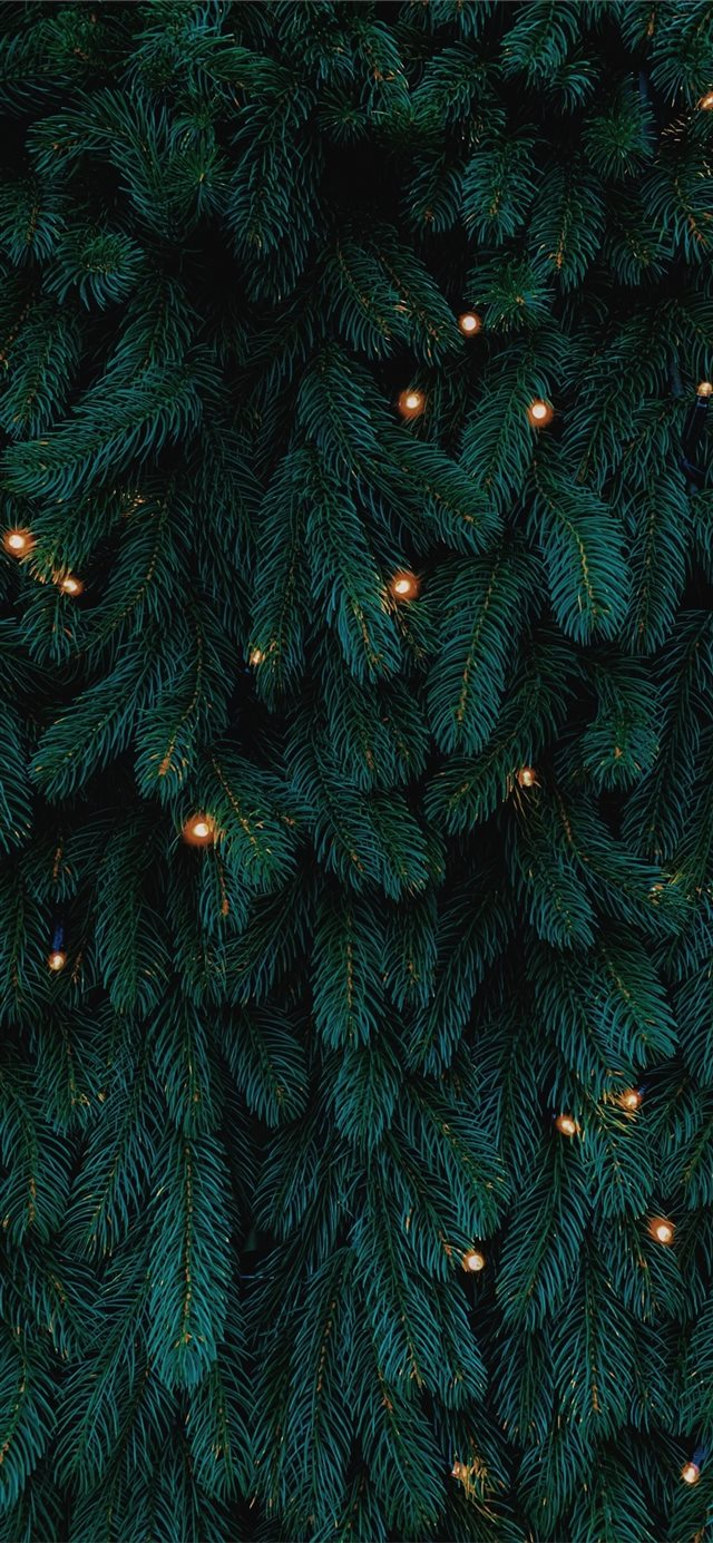 green Christmas tree with lights iPhone X wallpaper