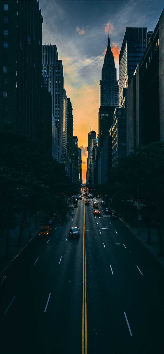 low light photography of vehicle crossing road bet... iPhone X wallpaper