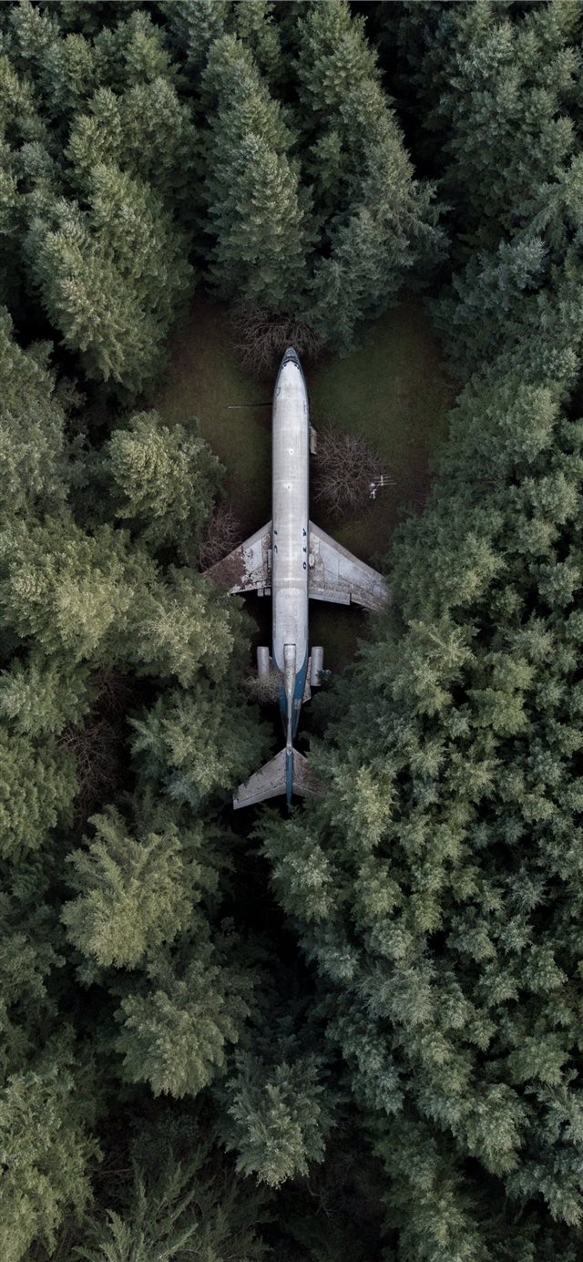 aerial photography of gray airplane iPhone 11 wallpaper