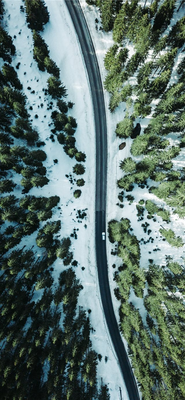 aerial photography vehicle on road surrounded by t... iPhone 11 wallpaper