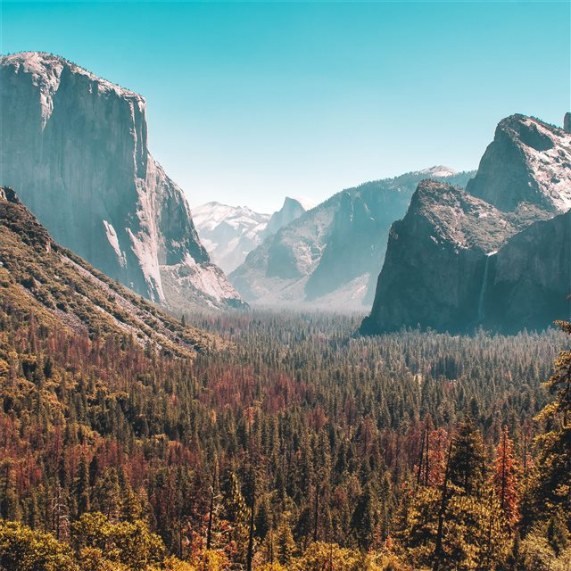 forest mountain yosemite valley 5k iPad Air Wallpaper