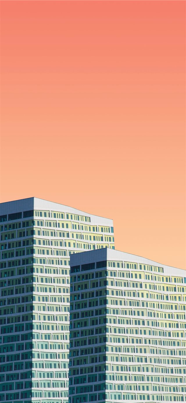 two gray high rise building illustrations iPhone 11 wallpaper