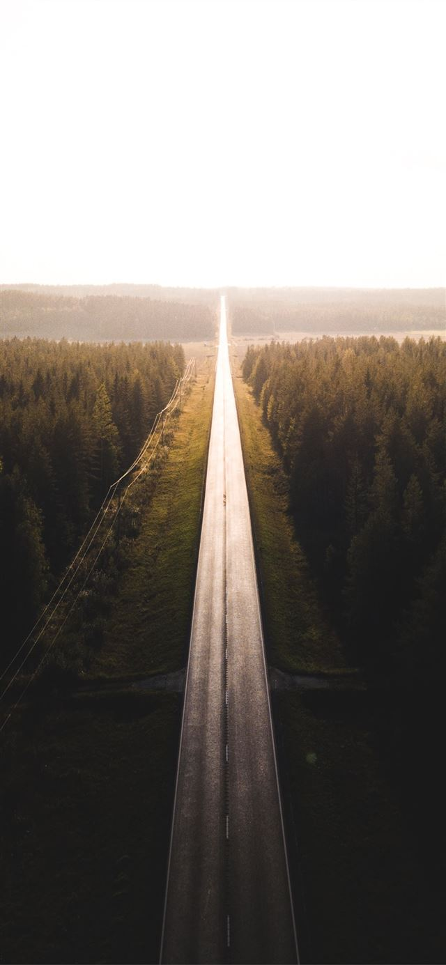 black road surrounded by trees iPhone X wallpaper