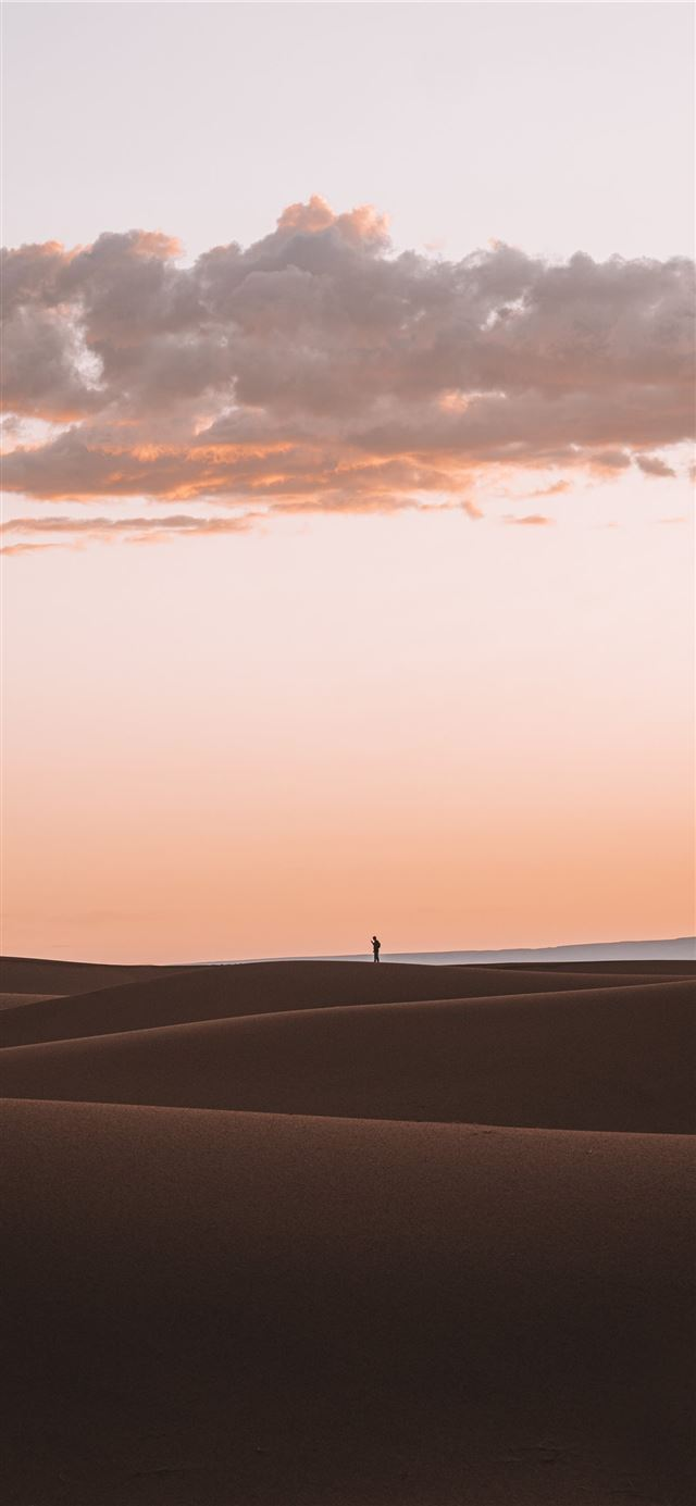 silhouette of person standing on desert iPhone 11 wallpaper