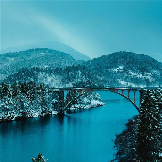 beautiful bridge between lake in forest 4k iPad wallpaper