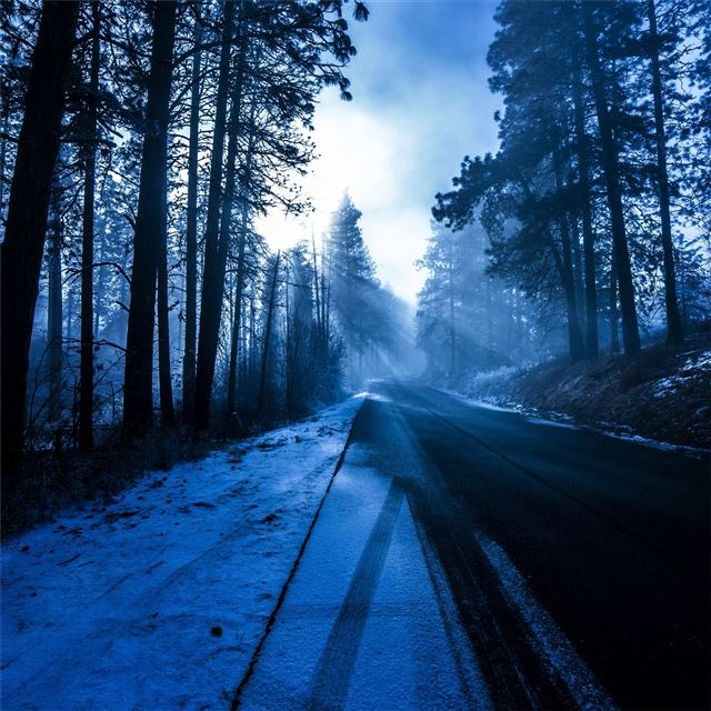 winter road nature 5k iPad wallpaper