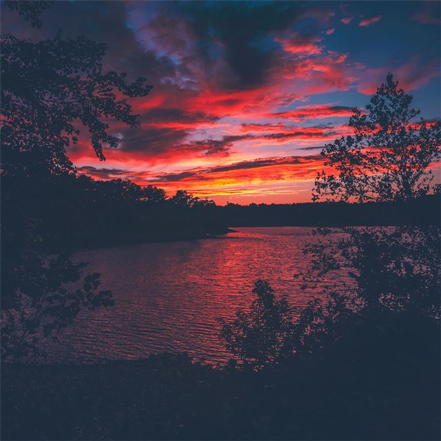 red evening sunset lake view from forest woods iPad Pro wallpaper